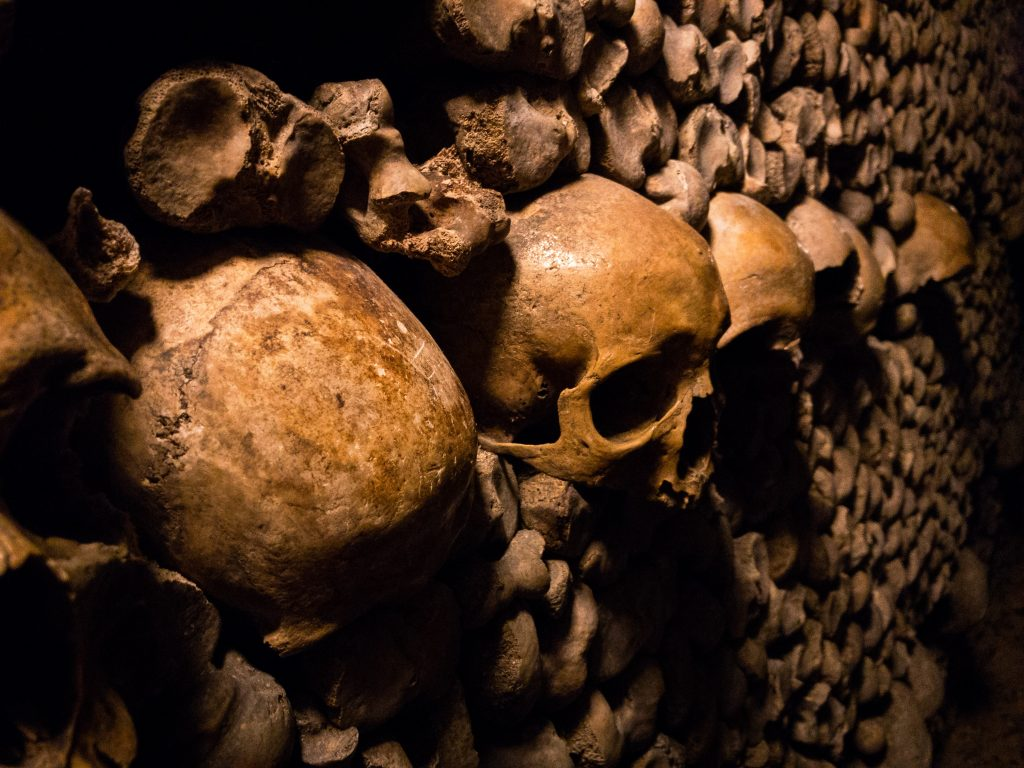 discover catacombs in Paris